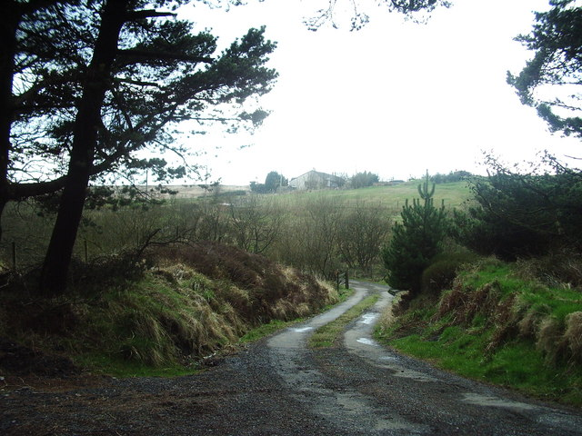 The road to Broadhead