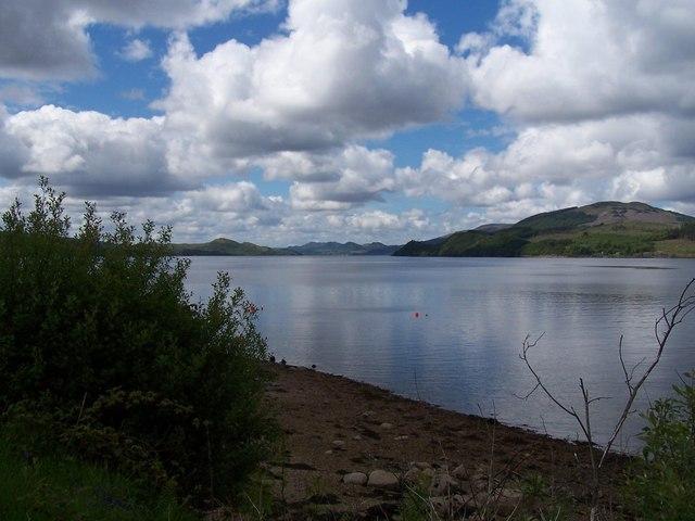 Shoreline and Loch Fyne