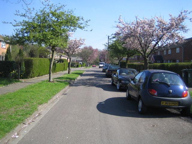 Chipperfield: Croft Meadow