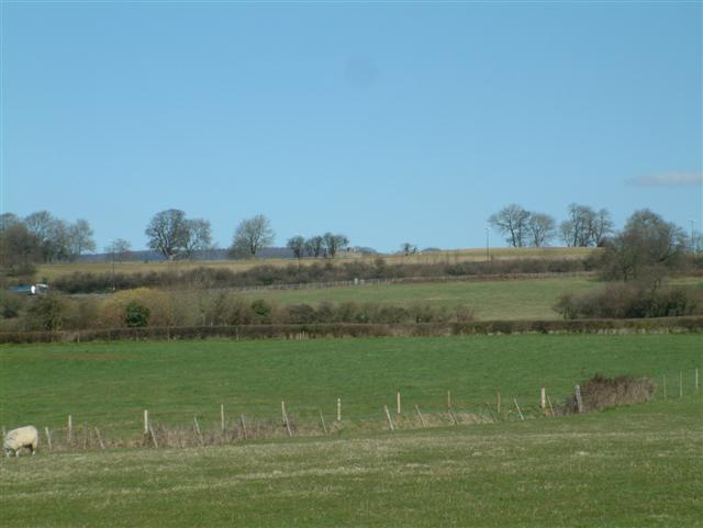 Looking North from the B4245