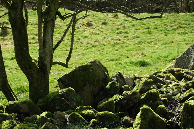 Mossy Stones below Fornought Farm