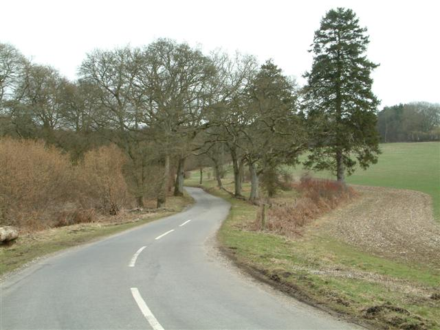The road to Faccombe