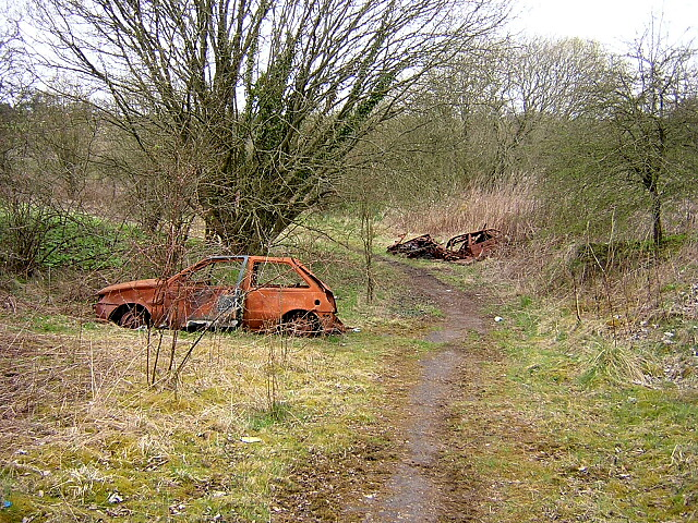 Well Rotted Cars