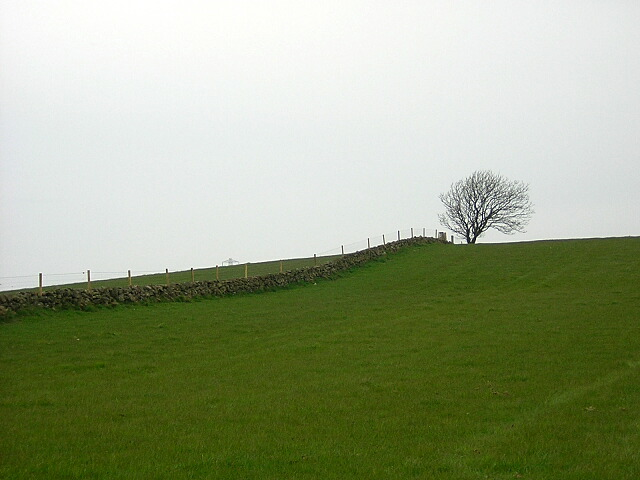 Dyke and Trig Point