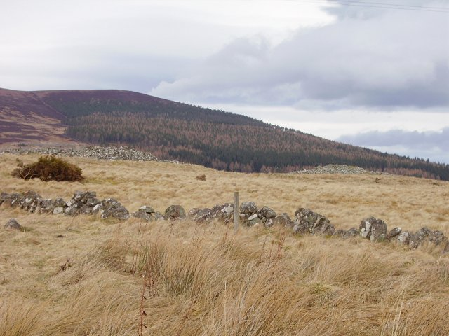 Chambered cairns, Knocklea