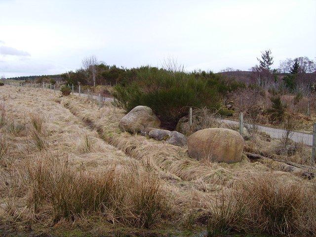 Old field, Boath