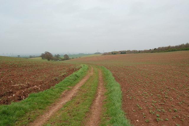 Bridleway through farmland