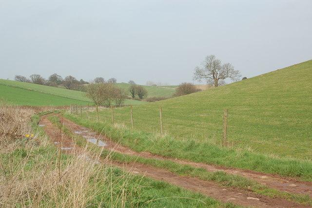 Bridleway South of Repton Park Farm