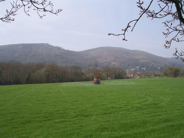 Spraying near Mayall's Coppice