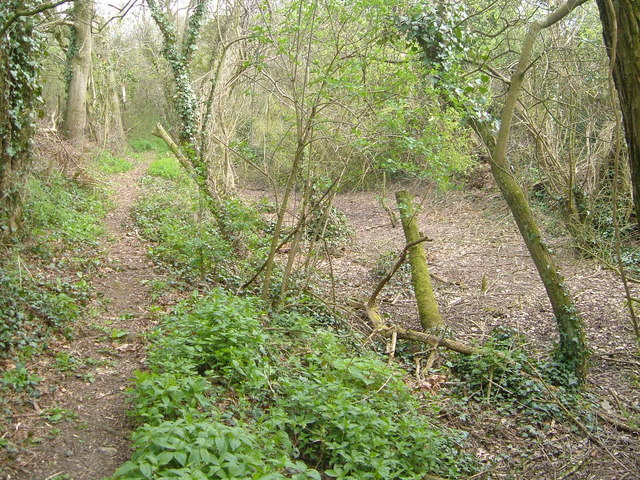 Remains of Chard Canal near Dowlish Ford