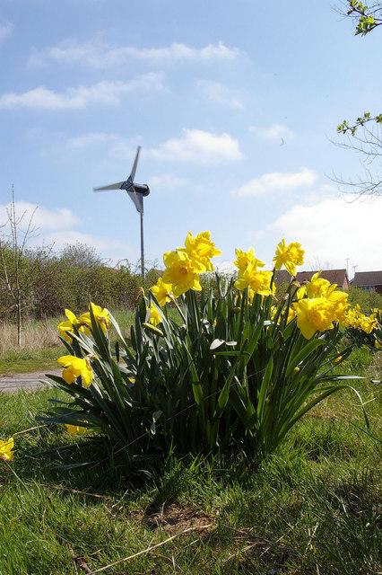 Wind Turbine, Sweyne Park