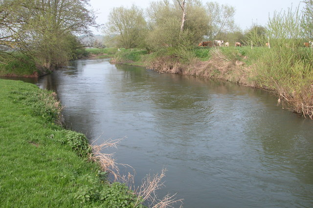 The River Lugg at Hampton Bishop