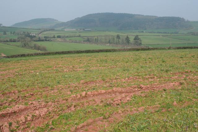 Brompton Ralph: towards Willett Hill