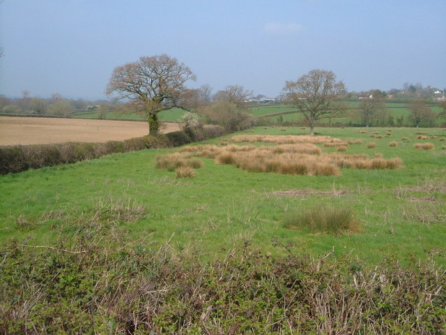View near Windmill Hill