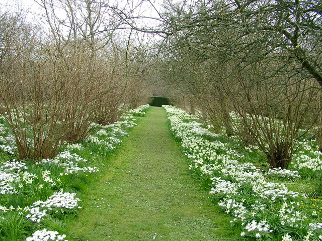 Would only a narcissist walk this path?
