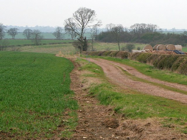 Farm track near Waltham on the Wolds