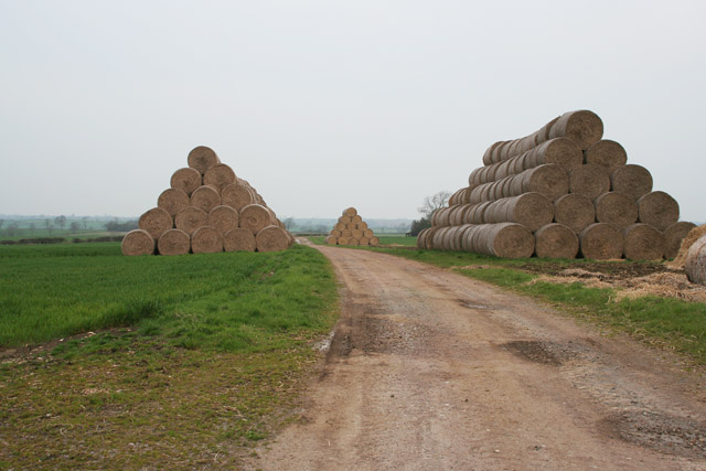 Straw bales near Waltham on the Wolds