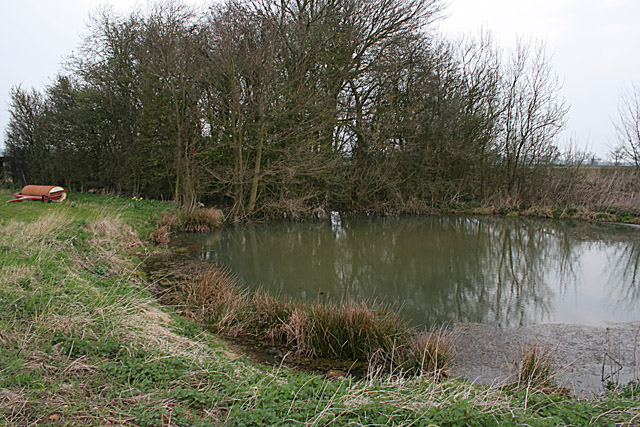 Small Pond near Waltham in the Wolds