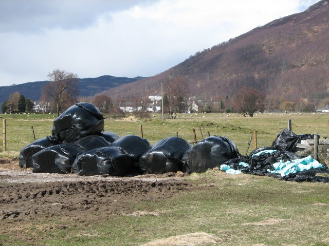 Collapsed bales