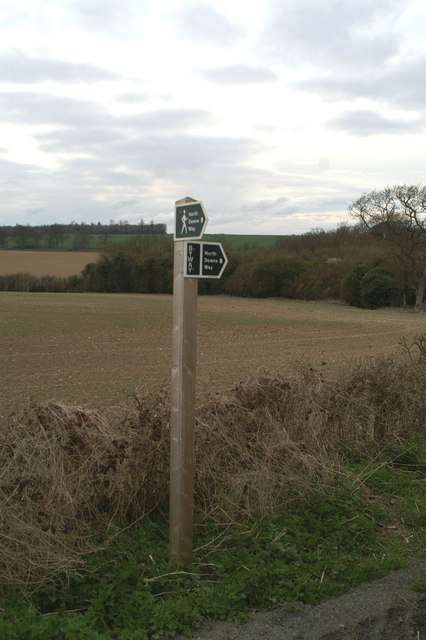 Pointer on the North Downs Way