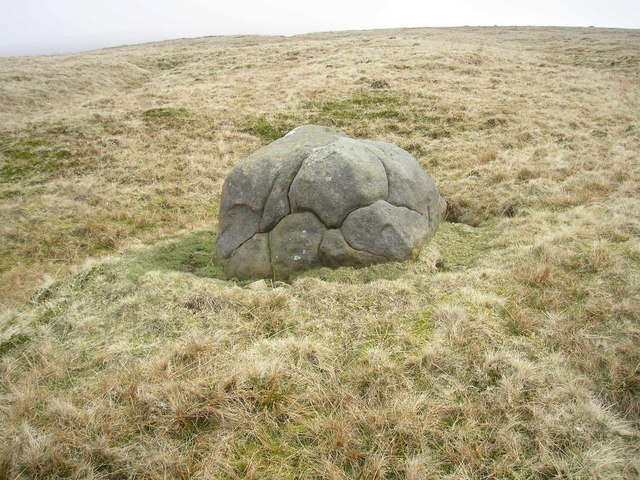 Boulder on Ingleborough Common