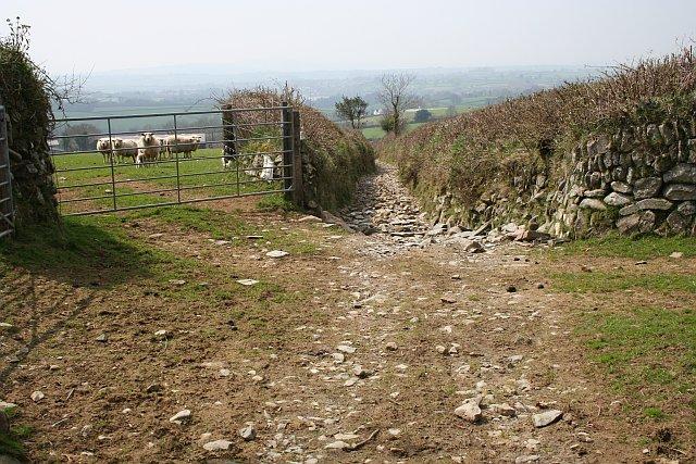 Collaton Lane