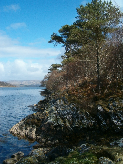 The shore of Loch Craignish