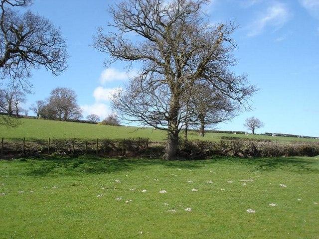 Llannefydd fields
