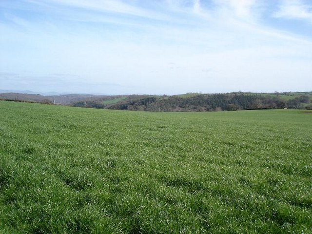 Fields between Moelfre and Glascoed