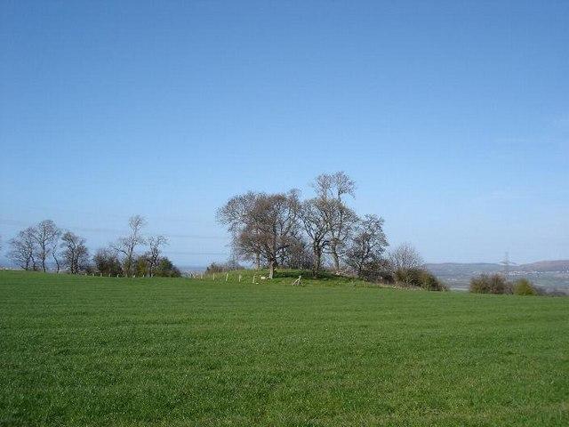 Glascoed fields