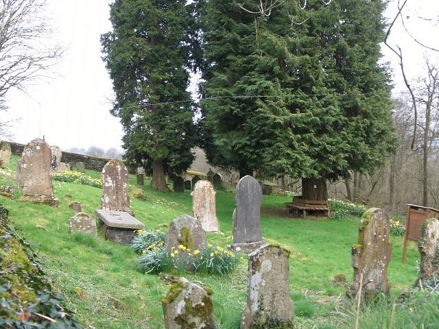 Gelinos Cemetery near Llanwrtyd Wells