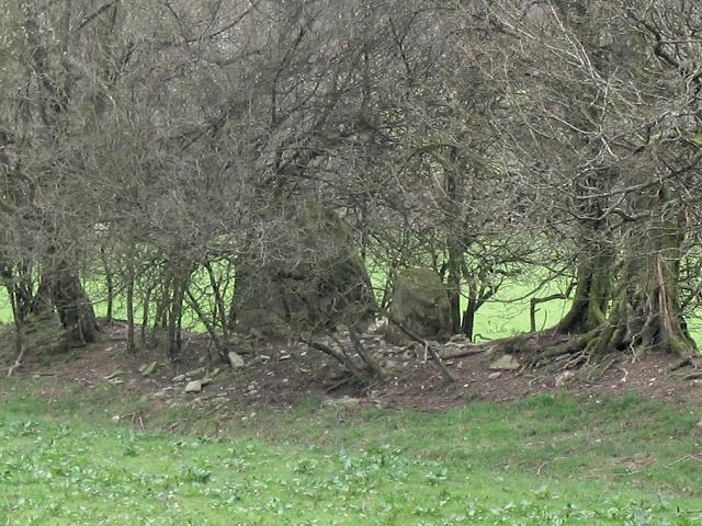 Standing stones near river Irfon