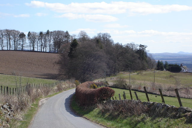Road from Rattray to Drimmie