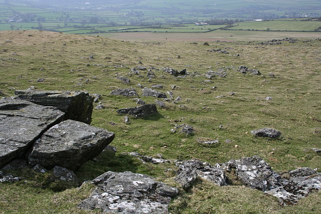 The Western Slope of Cox Tor