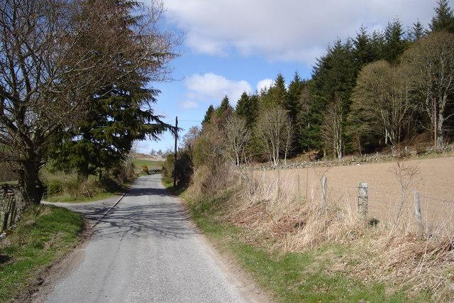 Low Bonnington Wood