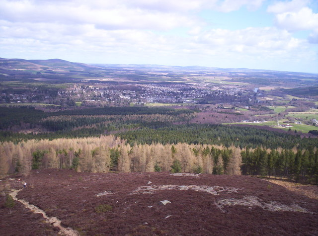 Scolty Woods and Banchory