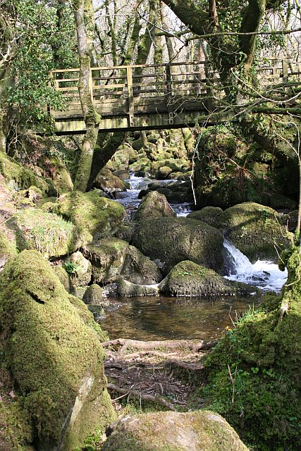 Footbridge over a Dartmoor Stream
