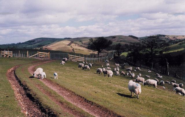 The Shropshire Way