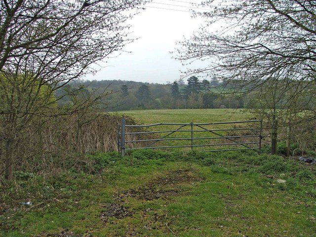 Gateway on Farmland, Hornbeam Lane, looking towards Hoppets Wood.