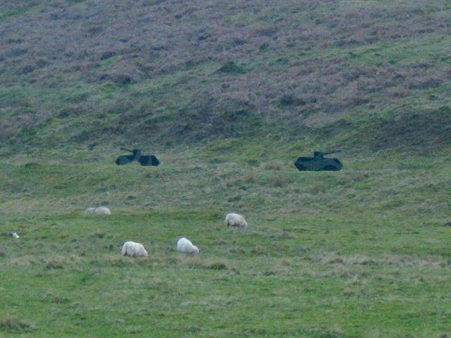 Fake tanks on Sennybridge artillery range