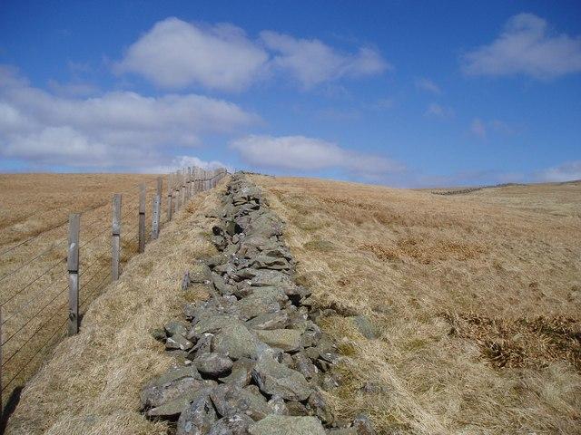 Dyke on Firthhope Rig