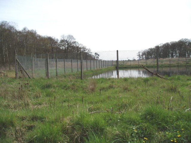 Holford Moss near Plumley