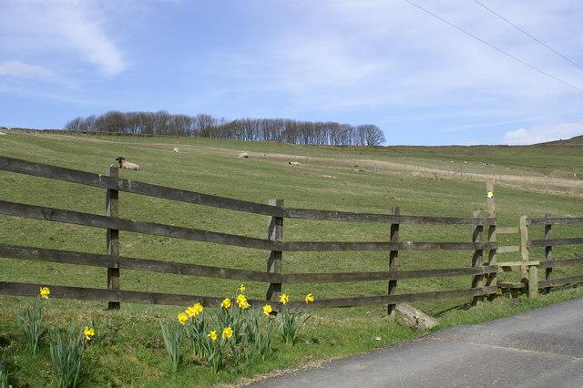 Rossendale Way