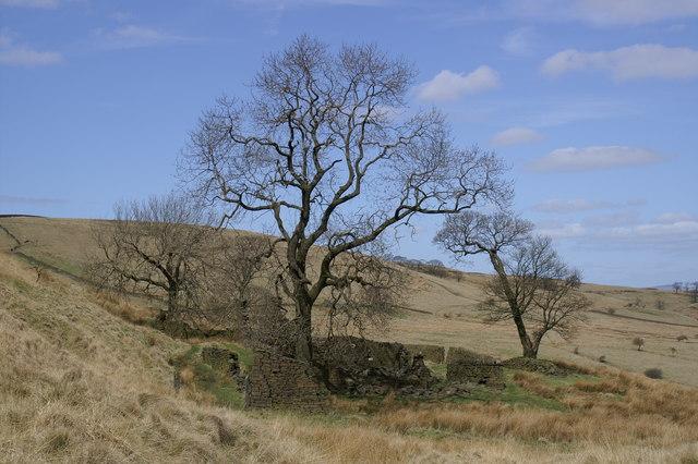 Ruined Farm Musden Valley