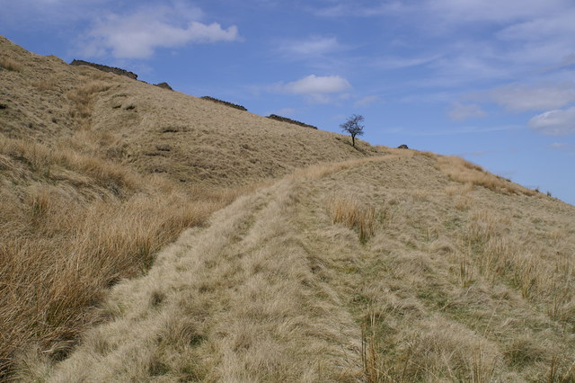 Old Track to Musden Head