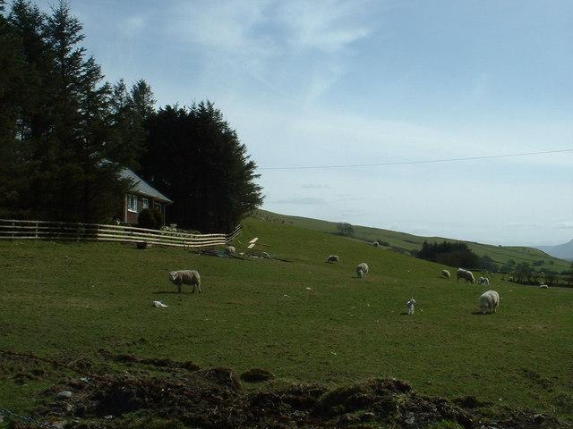 Hafod-y-bryn Farm