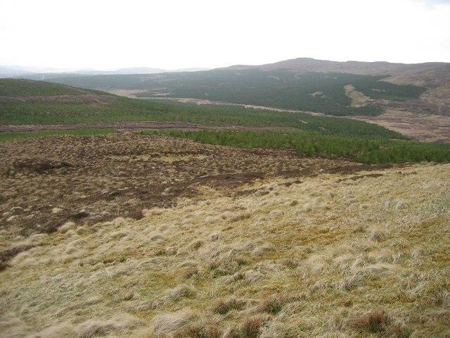 Woodland south of Ben Uigshader