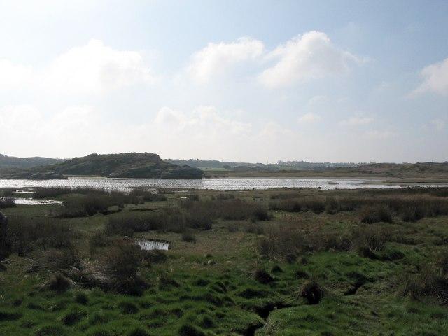 Saltmarsh at Trearddur