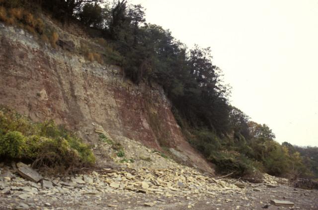 Sedbury Cliff