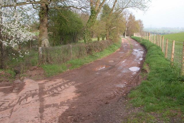 Track at Maes-y-felin